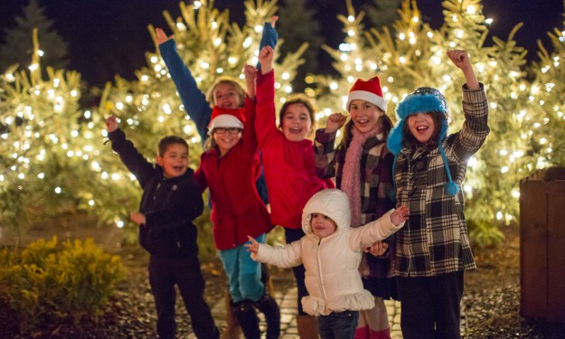 Fairgrounds Festival of Lights Celebrates a Decade of Magic