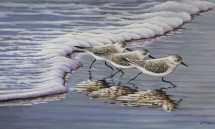 Len Rusin explores the great outdoors in River Gallery show